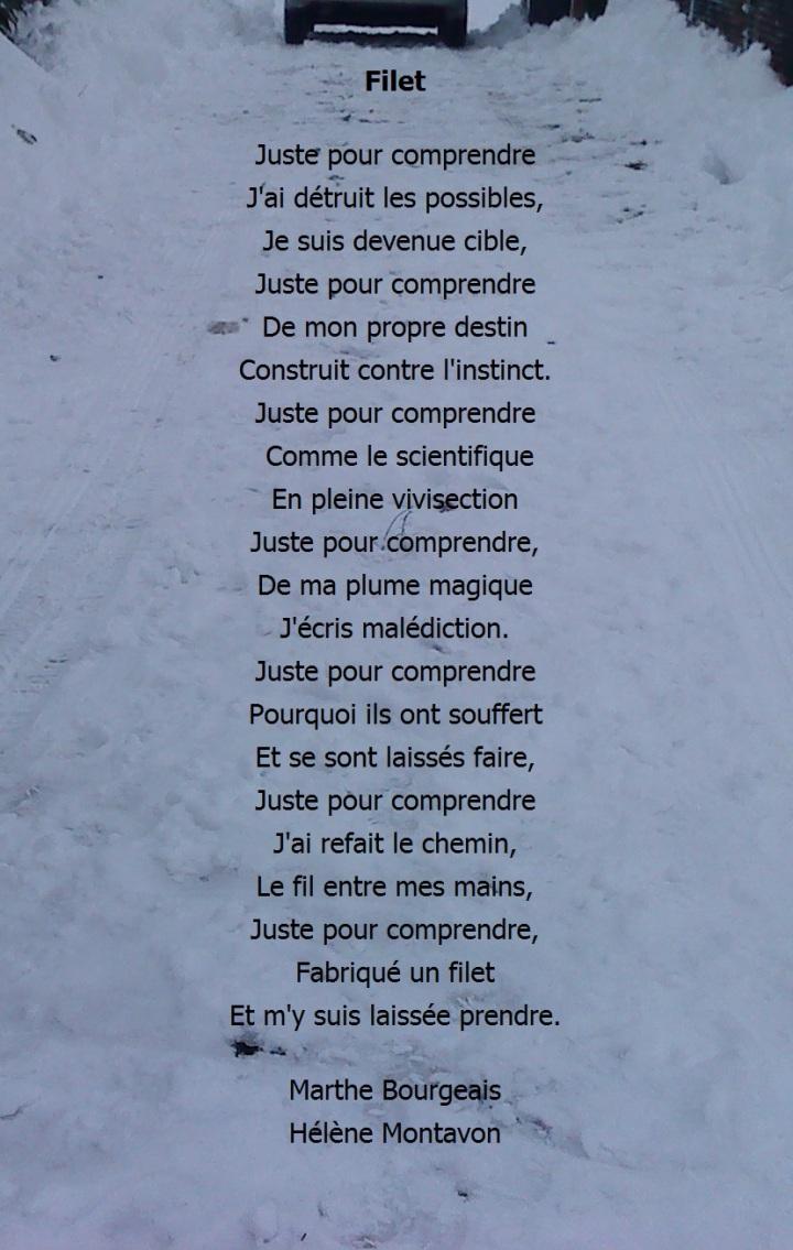 neige-filet.JPG
